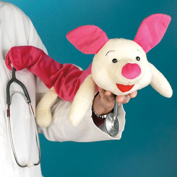 Stethoskopbezuge Schweinchen