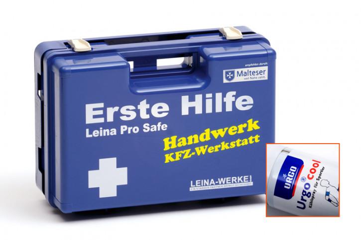 Leina Pro Safe - KFZ-Werkstatt